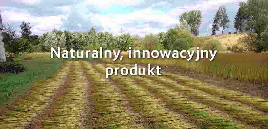 Slajder naturalny innowacyjny produkt leczniczy